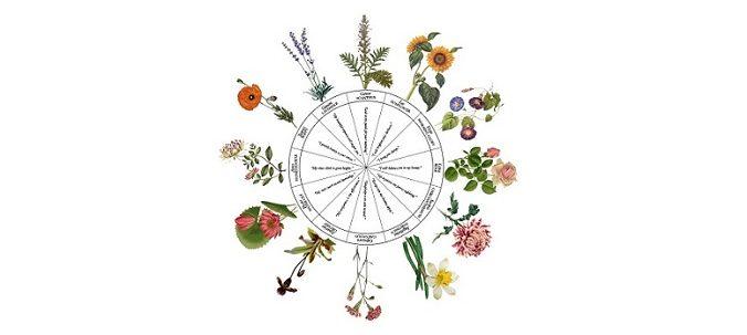 horoscopul floral