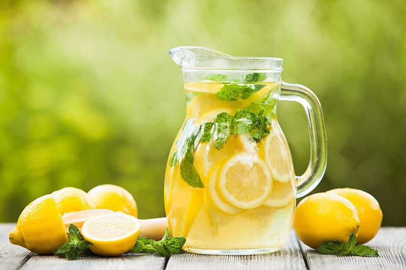 dieta cu limonada