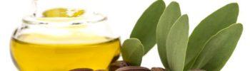 cum te ajuta uleiul de jojoba