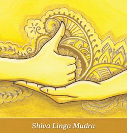 7 mudre pentru dragoste și claritate Shivalinga