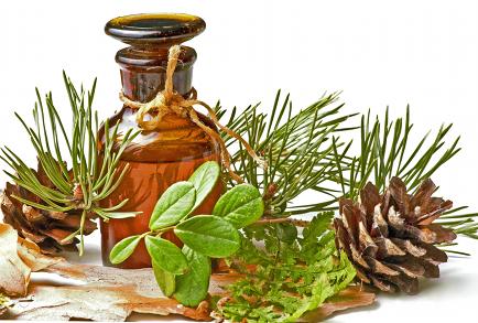 este posibilă tratarea îmbinărilor cu ulei de brad)