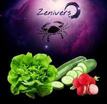 Dieta  astrologica a zodiei Rac 2