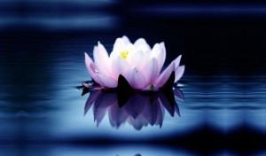 Spiritualitatea intareste sistemul imunitar 2