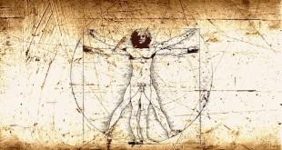 Numerologie Structura numerologică a corpului uman – II