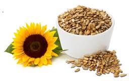 Tot ce trebuie sa stim despre seminte si despre curele cu seminte de floarea soarelui, schinduf si chimen 2