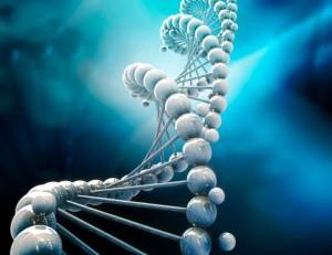 Componentele polaritatii Yin si Yang din structura ADN-ului uman 3