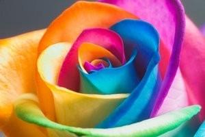 Cum ne influenteaza culorile caracterul si starea de spirit? 3