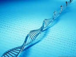 Putem modifica structura genetica a ADN-ului uman cu ajutorul cuvintelor? 2