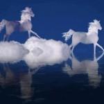 Ce inseamna cand visezi un cal sau mai multi cai