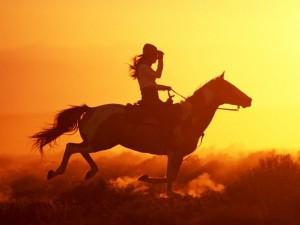 Ce inseamna cand visezi un cal sau mai multi cai 4