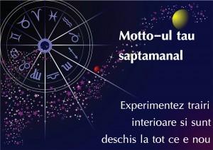 Horoscop saptamanal Capricorn 6-13 februarie 2016 2