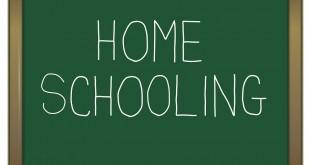 Educatie si parenting Homeschooling: copilul tău,  încotro?