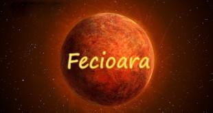 Horoscop saptamanal Horoscop săptămânal Fecioară 5-12 februarie 2017