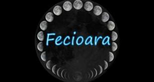 Horoscop saptamanal Horoscop săptămânal Fecioară 12-19 februarie 2017