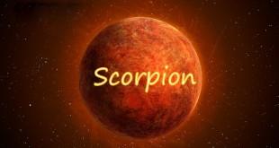 Horoscop saptamanal Horoscop săptămânal Scorpion 5-12 februarie 2017