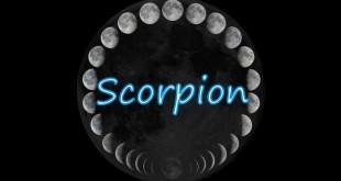 Horoscop saptamanal Horoscop săptămânal  Scorpion 12-19 februarie 2017