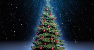 Ritualuri si simboluri Ce simbolizează de fapt Bradul de Crăciun?