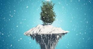 Ritualuri si simboluri Cum să ne bucurăm de tradiții fără să tăiem brazii de Crăciun?