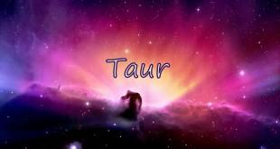 Horoscop zilnic Horoscop zilnic Taur 14 ianuarie 2017