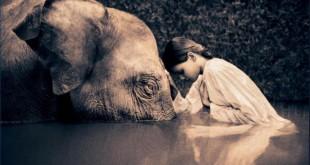 Inteligenta emotionala Faptul că îți pasă de ceilalți te face un om mai bun