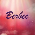 Horoscop zilnic Berbec 10 aprilie  2017