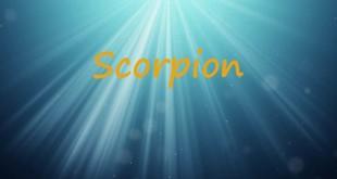 Horoscop saptamanal Horoscop săptămânal Scorpion 16-23 aprilie 2017
